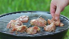 изолированная решетка барбекю Стейки цыпленка приготовления на гриле видеоматериал