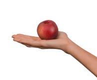 Изолированная рука женщины женская держа персик плодоовощ красный на белой предпосылке Стоковые Фотографии RF