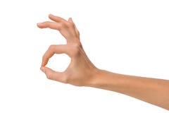 Изолированная рука пустой открытой женщины женская в ОДОБРЕННОМ положении на белой предпосылке Стоковые Фотографии RF