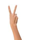 Изолированная рука пустой открытой женщины женская в положении знака мира на белой предпосылке Стоковые Изображения