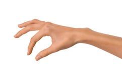 Изолированная рука пустой открытой женщины женская в положении на белой предпосылке Стоковые Фотографии RF