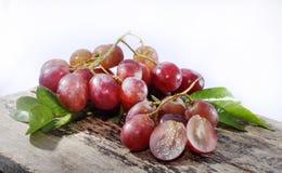 Изолированная студия виноградины Стоковые Фото