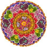 Изолированная флористическая мандала влюбленности Стоковая Фотография RF
