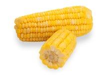 2 изолированного кукурузного початка, отрезанного одного, Стоковая Фотография RF