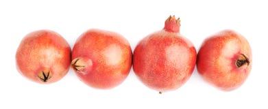 4 изолированного плодоовощ гранатового дерева Стоковая Фотография