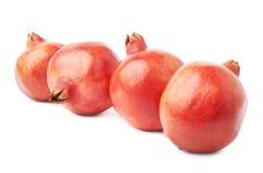 4 изолированного плодоовощ гранатового дерева Стоковое Изображение