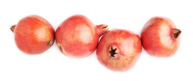 4 изолированного плодоовощ гранатового дерева Стоковая Фотография RF