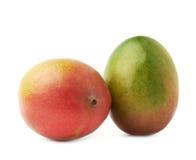 2 изолированного плодоовощ манго Стоковое Изображение
