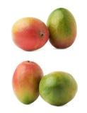2 изолированного плодоовощ манго Стоковые Изображения RF