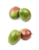2 изолированного плодоовощ манго Стоковая Фотография RF