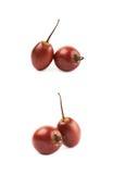 2 изолированного плодоовощ tamarillo Стоковое Изображение RF