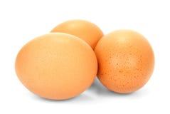 3 изолированного яичка Стоковое Фото
