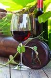изолированное вино waite om красное Стоковые Изображения RF