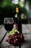 изолированное вино waite om красное стоковая фотография