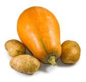 Изолированное изображение зрелых тыквы и крупного плана картошек Стоковые Фото