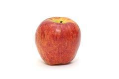 Изолированное одиночное простое красное яблоко на белой предпосылке плодоовощ здоровый стоковые изображения