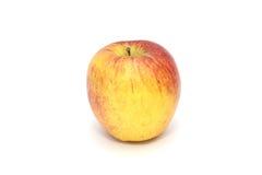 Изолированное одиночное простое красное яблоко на белой предпосылке плодоовощ здоровый стоковые изображения rf