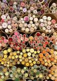Изолированное собрание кнопки в отдельно трубках Стоковое фото RF