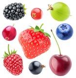 Изолированное собрание ягод Стоковые Изображения RF
