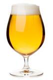Изолированное стекло тюльпана пива лагера Стоковые Фото