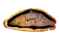 Изолированное geode агата стоковые фото