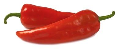 Изолированное kapia перца стоковая фотография rf