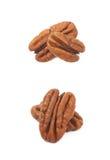 2 изолированной гайки пекана Стоковые Фотографии RF