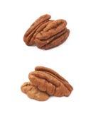 2 изолированной гайки пекана Стоковое Изображение RF