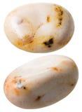 2 изолированной драгоценной камня яшмы изображения Стоковое фото RF