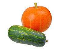 Изолированные апельсин и зеленый цвет тыквы, Стоковая Фотография RF
