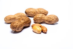 изолированные арахисы Стоковое Изображение