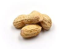 изолированные арахисы Стоковые Изображения RF