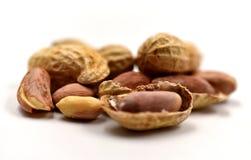 изолированные арахисы Стоковая Фотография
