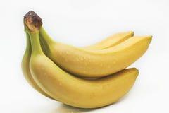 Изолированные бананы ветви в падениях воды Стоковые Изображения RF