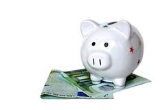 Изолированные банкноты копилки и евро Стоковые Изображения RF