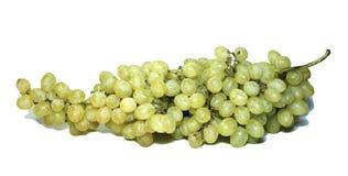 изолированные виноградины пука Стоковая Фотография RF