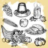 изолированные графики элементов изобилия предпосылки возражают другие овощи вектора установленного благодарения тыквы традиционны Стоковые Фото