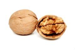 изолированные грецкие орехи белые Стоковое Фото