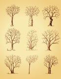 Изолированные деревья нарисованные рукой Стоковая Фотография