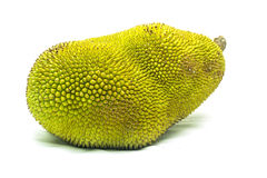 изолированные детеныши jackfruit Стоковое Фото