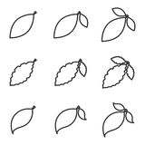 Изолированные значок или элемент вектора лист Стоковые Изображения RF
