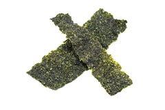 Изолированные листы морской водоросли Стоковое Изображение