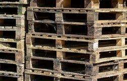 изолированные паллеты представляют белое деревянное Стоковое Фото