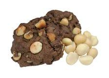 Изолированные печенья макадамии Стоковая Фотография