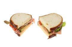 Изолированные половины сандвича Стоковое фото RF