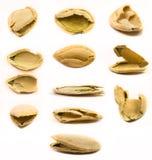 Изолированные раковины семени тыквы Стоковые Фотографии RF