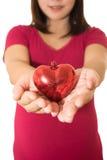 Изолированные руки сердца выставки женщины Стоковые Фотографии RF