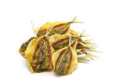 Изолированные рыбы тайского продукта сухие средств Стоковое Фото