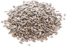 Изолированные семена подсолнуха Стоковое фото RF