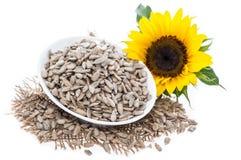 Изолированные семена подсолнуха Стоковое Изображение RF